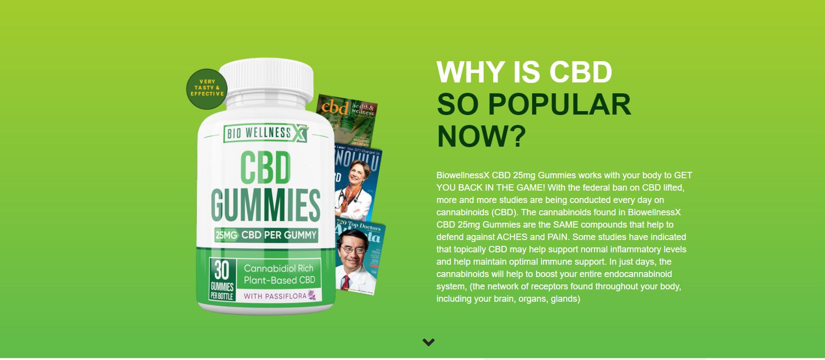 bio wellness cbd gummy rev